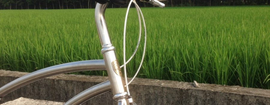 The Bullhorns Handlebar on Classicstyle Frame